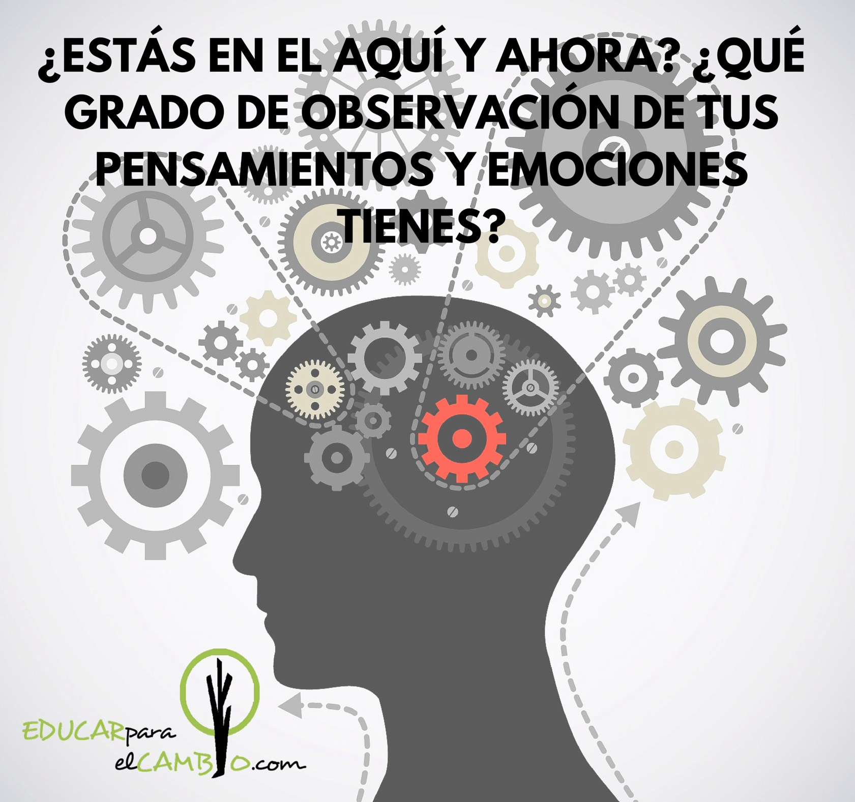 Coaching y Mindfulness en Educación