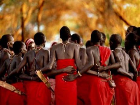 Toda la tribu educa